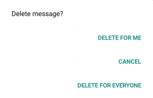 how to delete whats app sent tr